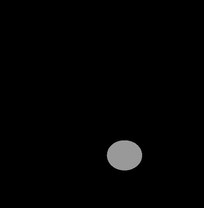 Art. 125 I Schürze B 100 x L 100cm Gehschlitz mittig